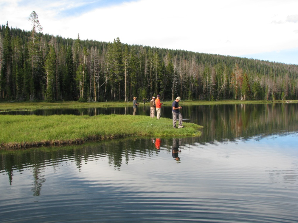 Pond fishing mid-hike at overhung floating bank ponds.